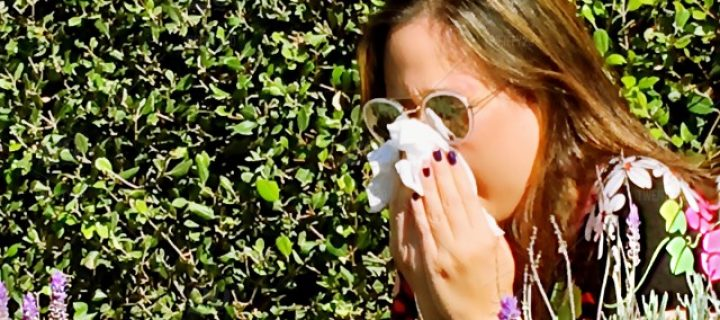 Don't let the hay fever time bomb spoil the bank holiday